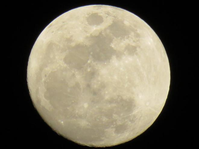 Galveston moon