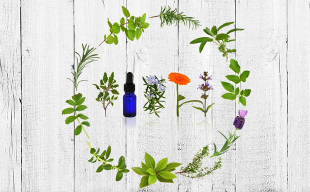 5-Essential-Oil-Pairs-for-Gut-Health