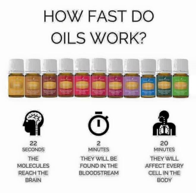 fast oils