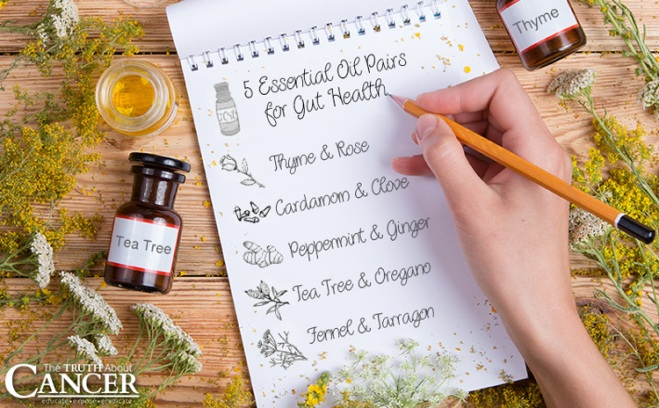 top-5-Essential-Oil-Pairs-for-Gut-Health