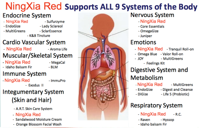 ningxia-red-supports-image-3.png