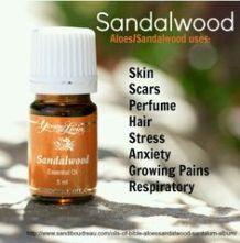 sandalwood-yl