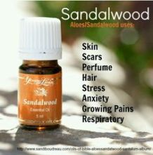 Scar Tissue Healing And Reduction The Oily Guru