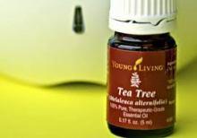 tea-tree-yl