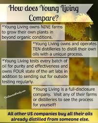 yl-compare