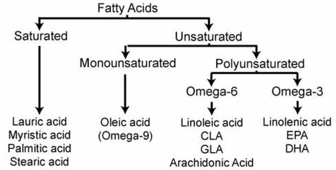 acids-chart