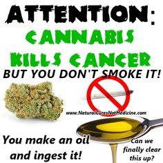 cannabis-no-smoke