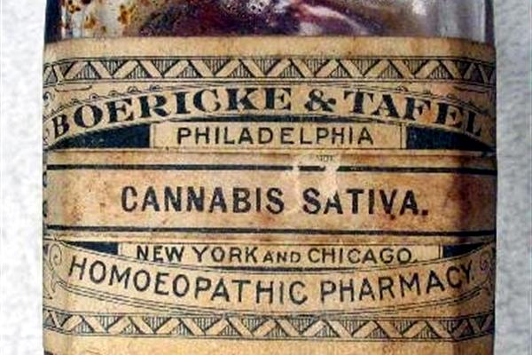 cannabis-for-arthritis-3 (1)