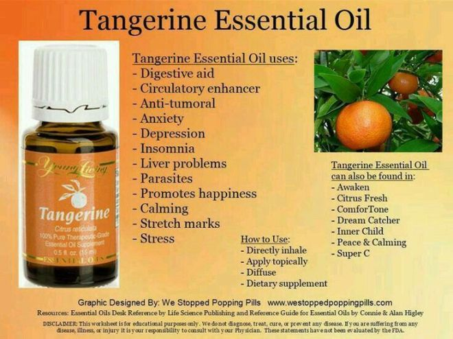 tangerine1