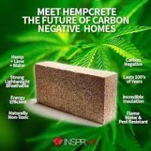 hemp carbon