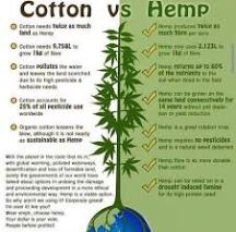 hemp cotton