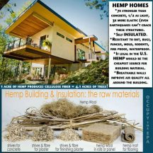 hemp homes