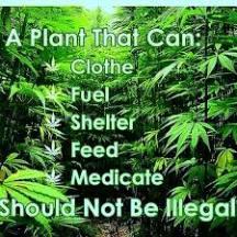 hemp illegal