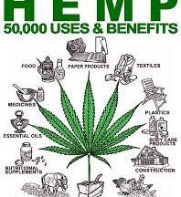 hemp many usees