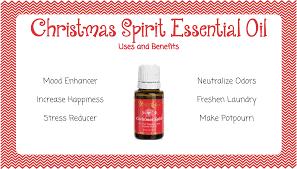 christmas spirit uses