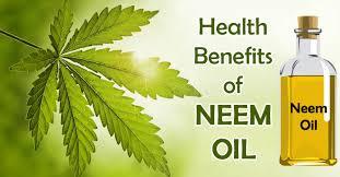 health neem