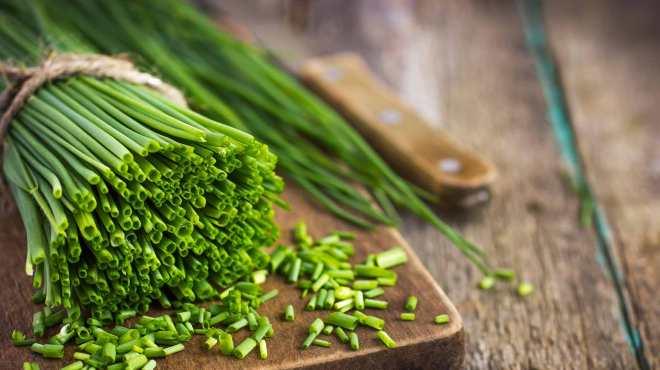 chives-herb-fresh-organic-green-stalks
